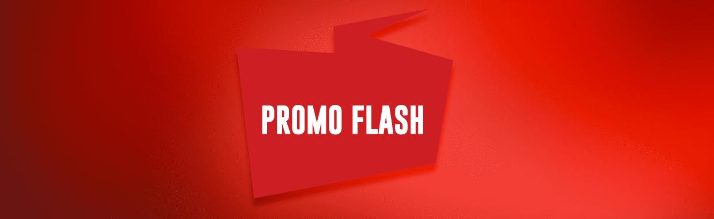 banner-site-flash